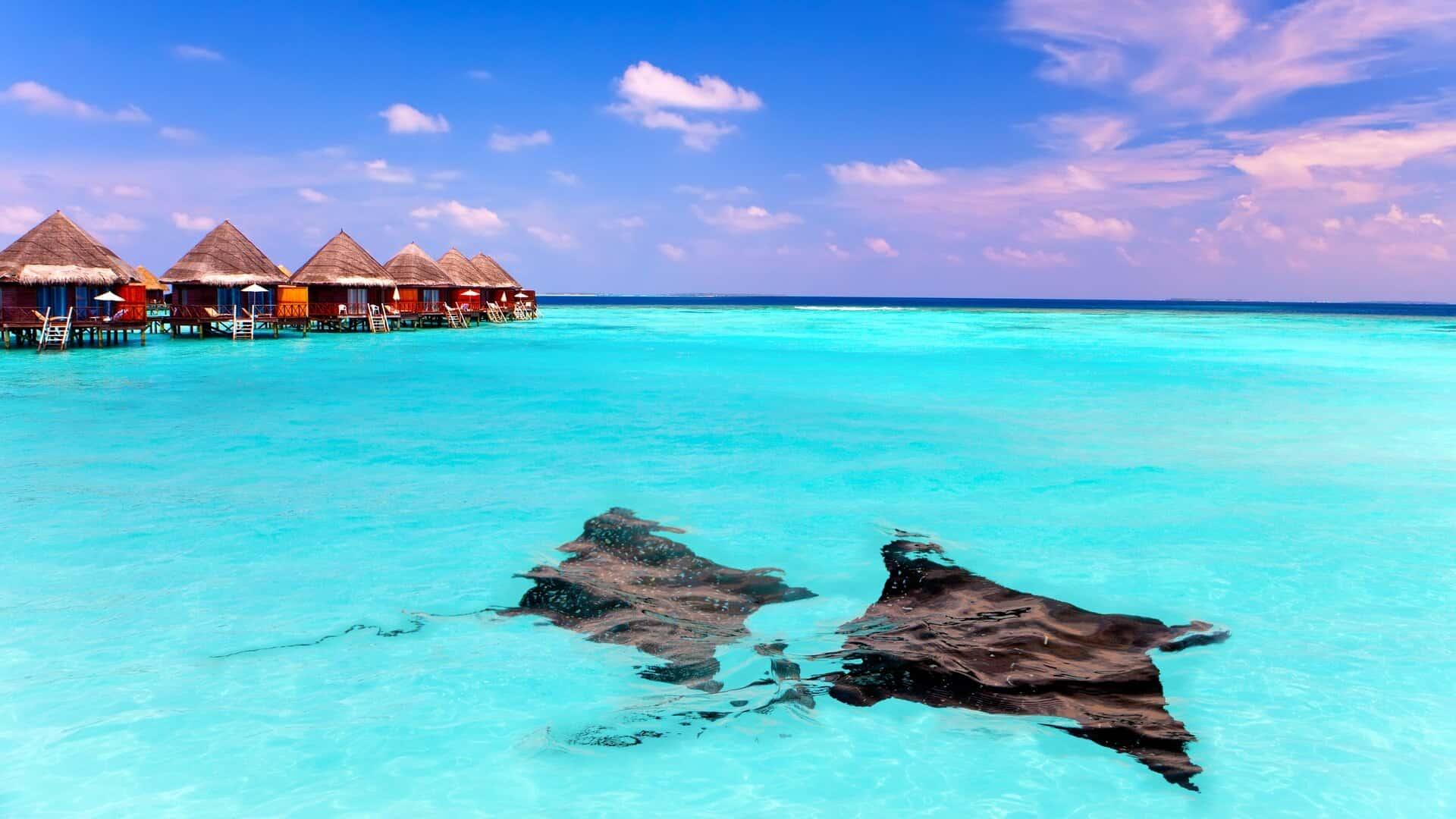 Choosing a hotel in the Maldives