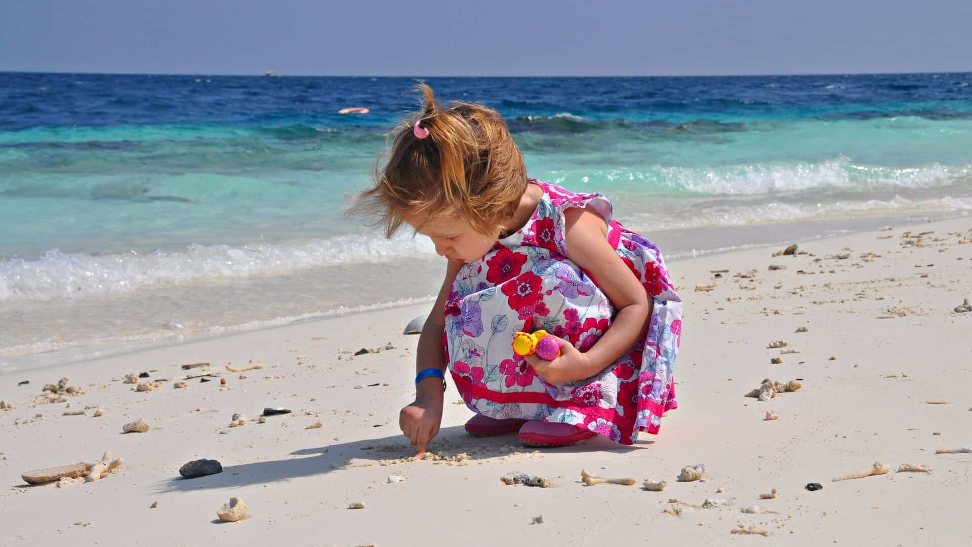 A child collects seashells on the coast of the Maldives island