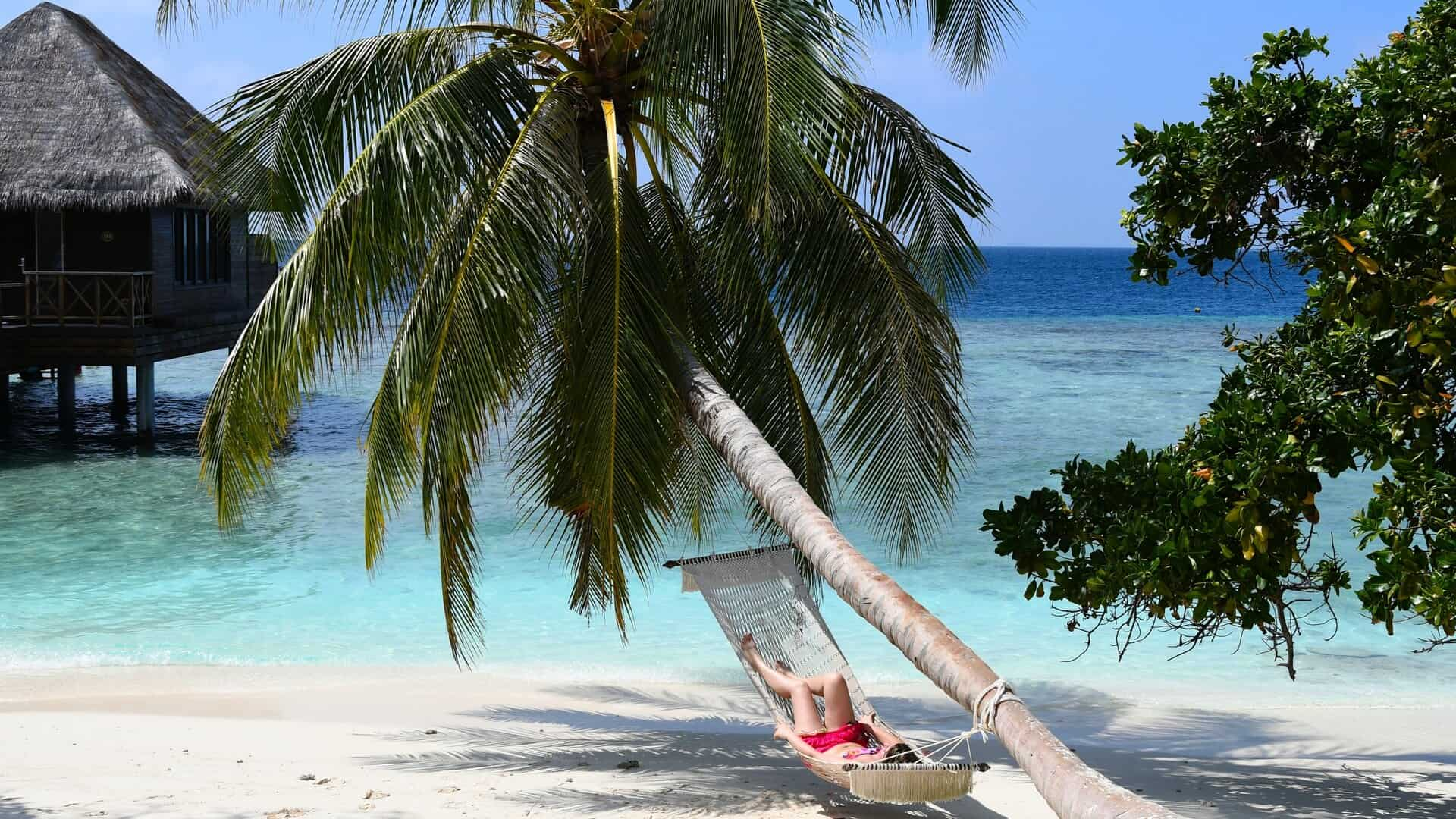 Vacationer on a hammock under a palm tree in the Maldives