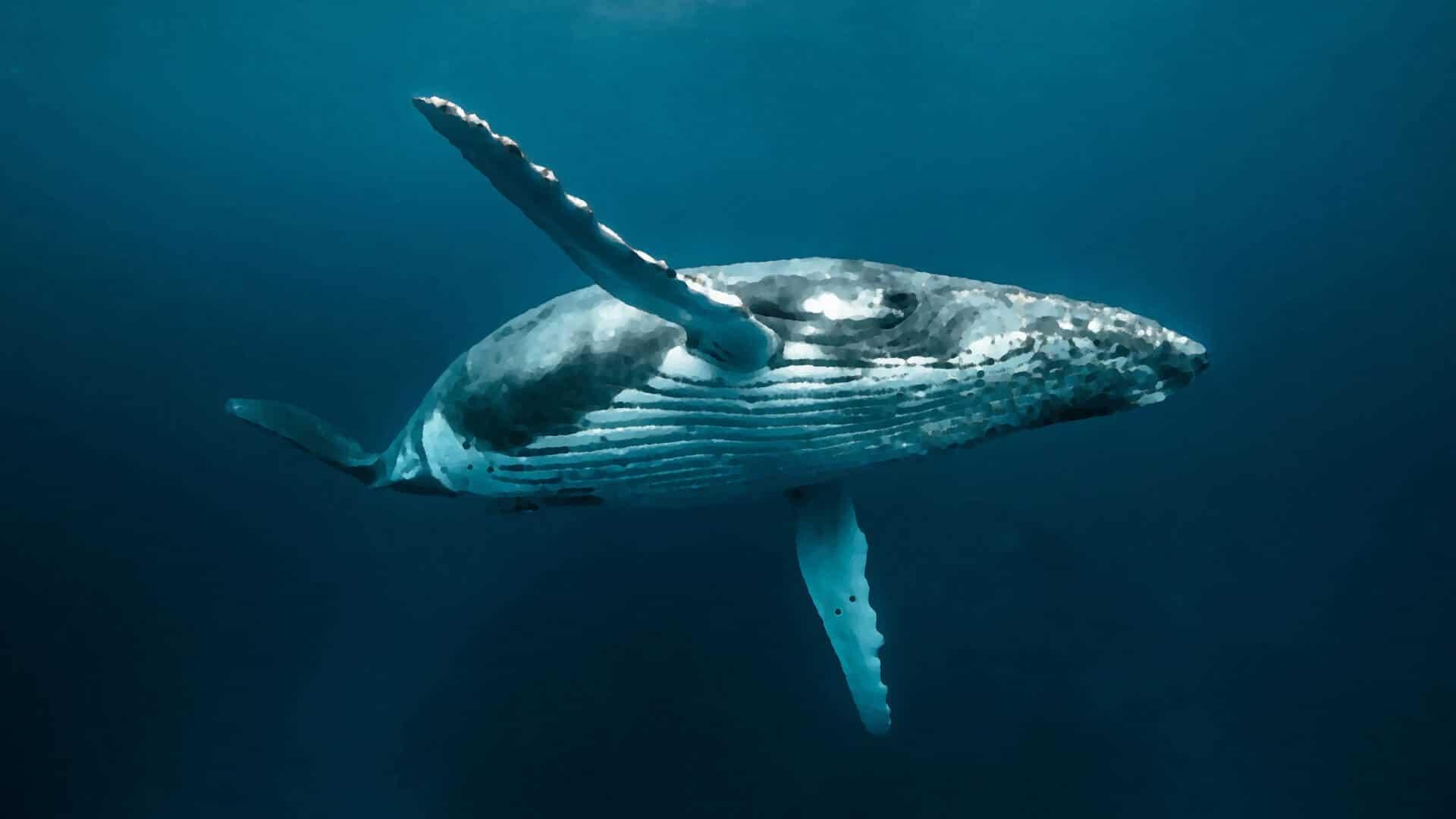 Легенда о человеке на ките